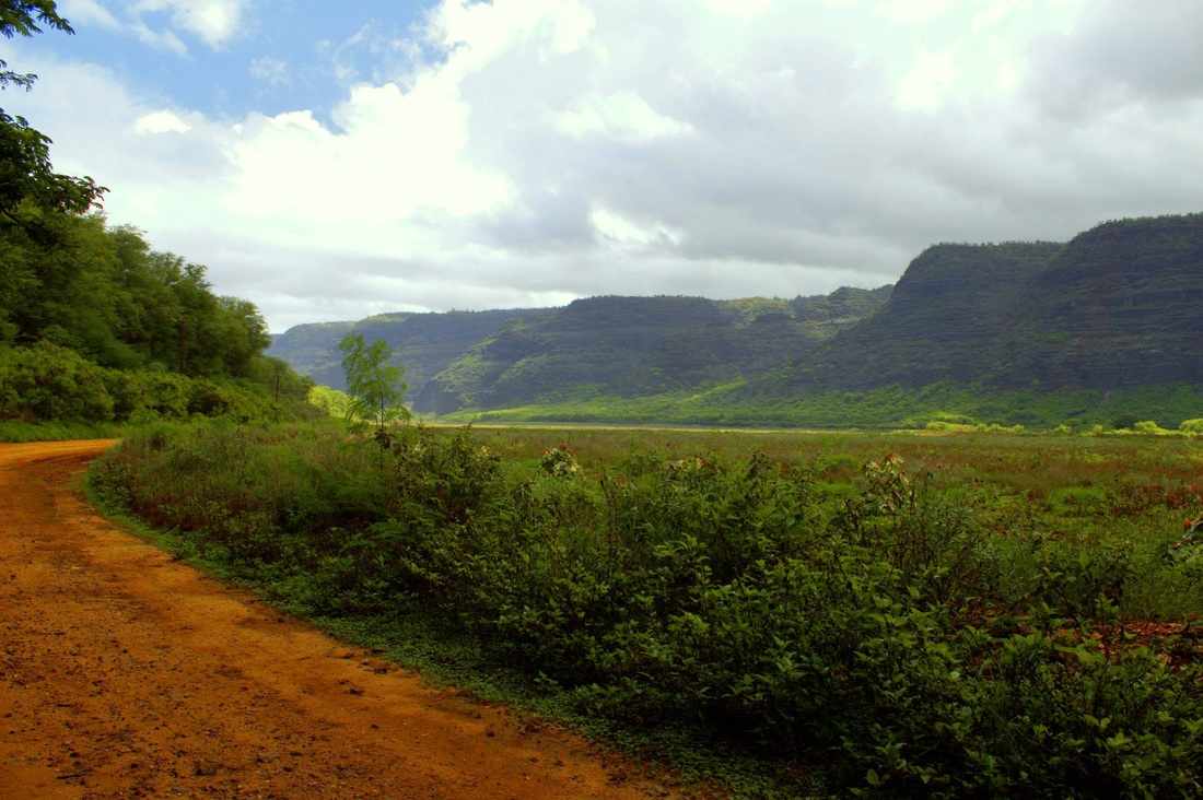 polihale-road