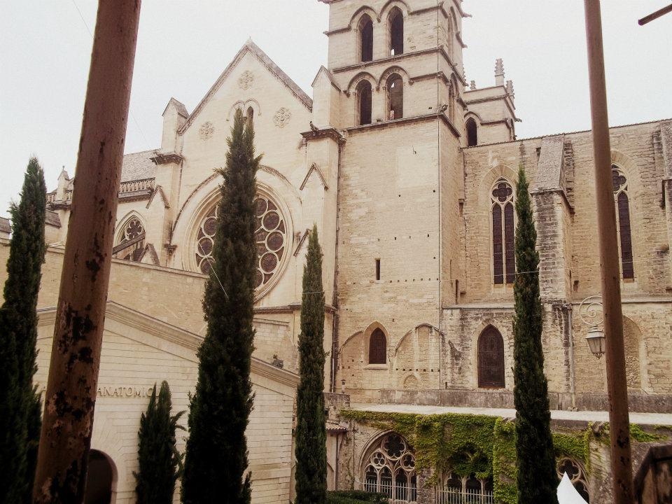 Faculte-de-Medecine-de-Montpellier