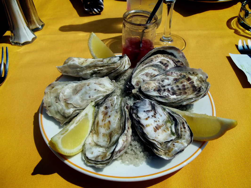 Oysters in France