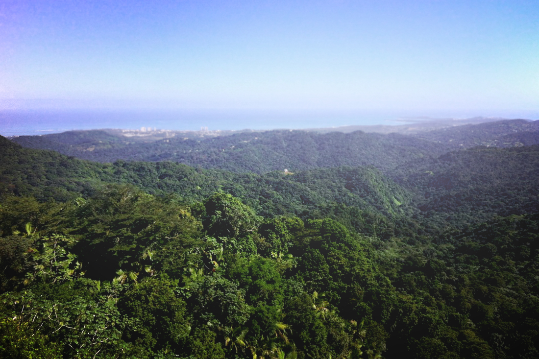 Observation point in El Yunque rainforest