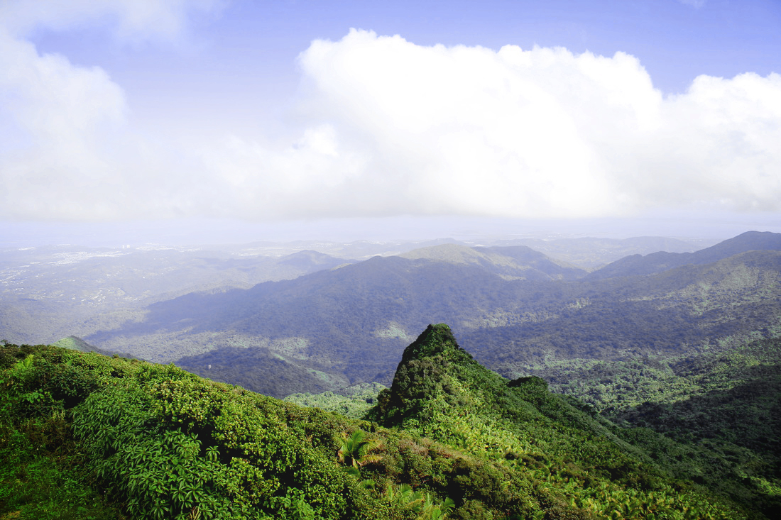 View from peak at El Yunque rainforest